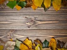 您的文本的创造性的背景从在一张木桌上的下落的秋叶 复制空间 库存照片