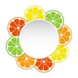 您的文本的圆的横幅用切片柑橘水果 r 皇族释放例证