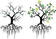 您的树设计 库存图片
