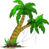 您的棕榈树设计 库存照片