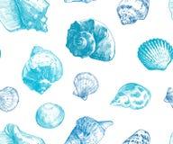 您的海洋生活设计的贝壳无缝的样式 库存例证