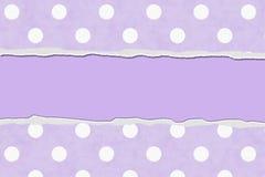 您的消息或邀请的紫色圆点被撕毁的背景 免版税库存照片