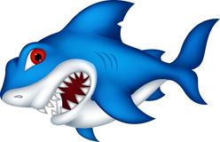 您的鲨鱼动画片设计 库存图片