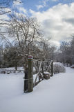 您背景秀丽设计庭院多雪的冬天 图库摄影
