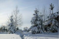 您背景秀丽设计庭院多雪的冬天 库存图片