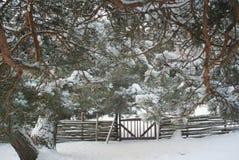 您背景秀丽设计庭院多雪的冬天 免版税库存照片