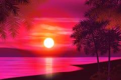 您背景设计花卉晚上无缝的夏天 在背景的棕榈树  库存照片