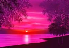 您背景设计花卉晚上无缝的夏天 在背景的棕榈树  免版税图库摄影
