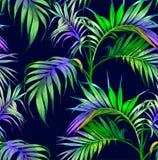 您背景设计花卉晚上无缝的夏天 棕榈树夜 向量例证