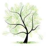 您艺术美丽的设计的结构树 免版税库存照片