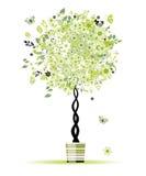 您设计花卉罐春天的结构树 免版税库存照片