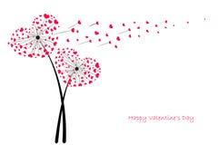 情人节与红色心脏贺卡传染媒介的爱蒲公英 免版税图库摄影