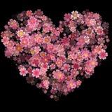 情人节心脏由被隔绝的樱桃花制成在黑Ba 库存例证