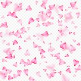 情人节浪漫背景桃红色心脏瓣落 在心脏五彩纸屑形状的现实花瓣  免版税库存图片