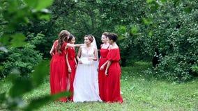 情感笑新娘和的女傧相谈话和 慢的行动 股票视频