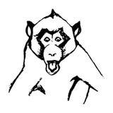 情感猴子抽象0 免版税库存图片