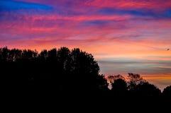 惊人的五颜六色的天空 免版税库存照片
