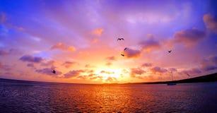 惊人的五颜六色的日落在加勒比 免版税库存图片
