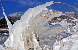 惊人的冬天横向,背景冰表单 免版税库存照片