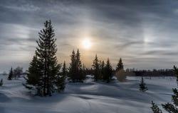 惊人的冬天风景在俄罗斯 免版税图库摄影
