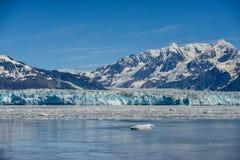 惊人的冰川在阿拉斯加 图库摄影