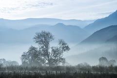 惊人的在乡下的冬天有雾的日出在Crummock W附近 免版税库存图片