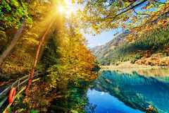 惊人的天蓝色的湖意想不到的看法在五颜六色的秋天森林中的 图库摄影