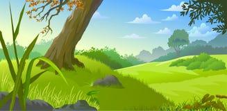 惊人的小山和草甸 图库摄影