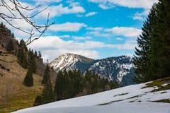 惊人的山风景在巴伐利亚 免版税图库摄影