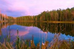 惊人的日出的,风景美丽的森林湖 免版税库存图片