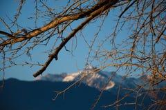 惊人的日落在Dorio, Como湖-意大利 库存图片