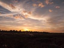 惊人的明亮的在湖水ref的秋天收获太阳设定场景 免版税库存照片