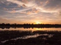 惊人的明亮的在湖水ref的秋天收获太阳设定场景 库存照片