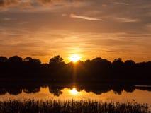 惊人的明亮的在湖水ref的秋天收获太阳设定场景 图库摄影