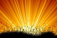 惊人的横向日出 库存图片