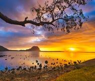 惊人的横向 莫纳山看法日落的 毛里求斯 免版税库存照片