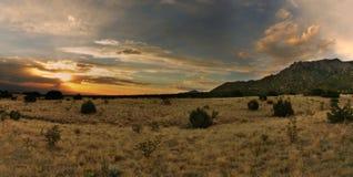 惊人的沙漠日落 免版税库存照片