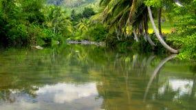 惊人的河在打横 免版税库存图片