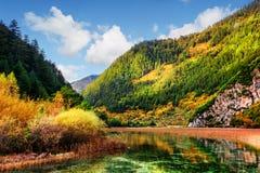 惊人的河美丽的景色用水晶水 免版税库存图片