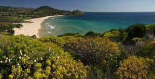 惊人的海滩chia撒丁岛视图 免版税库存照片