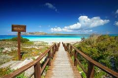 惊人的海滩La Pelosa斯廷廷奥,撒丁岛海岛,晴朗的春天 图库摄影