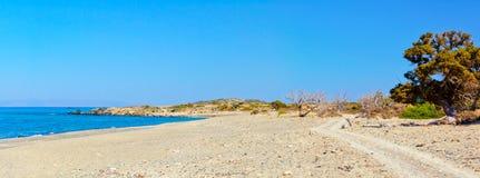惊人的海滩Chrissi海岛,在克利特附近,希腊 免版税库存照片