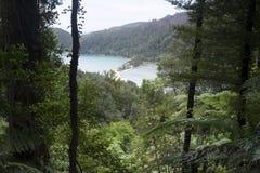 惊人的湖在新西兰d Y 免版税库存照片
