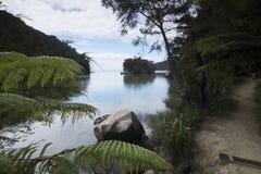 惊人的湖在新西兰d Y 免版税图库摄影