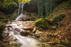 惊人的瀑布在五颜六色的秋天森林-意大利里 免版税库存照片