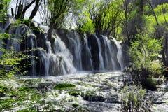 惊人的瀑布用在绿色森林中的透明的水 库存照片