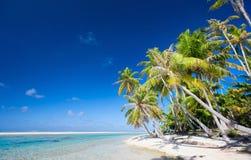 惊人的热带海滩 库存照片