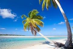 惊人的热带海滩 免版税库存照片