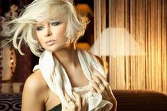 惊人的白肤金发的镇静纵向妇女 库存图片