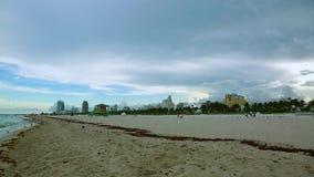 惊人的秀丽大西洋天际和蓝天 在迈阿密南海滩的鸥 股票视频
